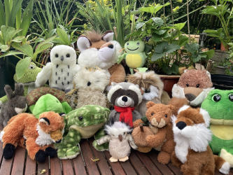 various stuffed toy animals